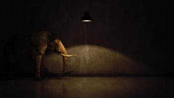 https://www.staceybarr.com/images/elephantintheroom.jpg