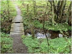 missing step in bridge
