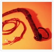 image of a whip
